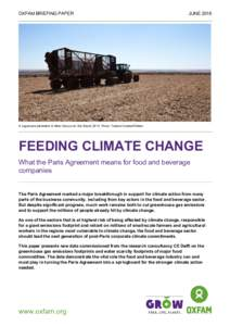 Feeding Climate Change: What the Paris Agreement means for food and beverage companies