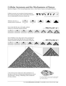 Cellular Automata and the Mechanisms of Nature Based on Chapter 2: The Crucial Experiment, from A New Kind of Science by Stephen Wolfram If a cell and its neighbors look like this at one step Cellular automata are exampl