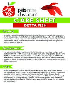 Community aquarium idmarch document search engine for Betta fish care sheet