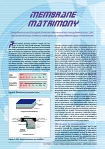 Membrane matrimony DeanAlvarado and Douglas E.Gottschlich,MembraneTechnology Research,Inc.,USA, discuss the recovery of refinery waste gases by uniting different types of membranes.  P