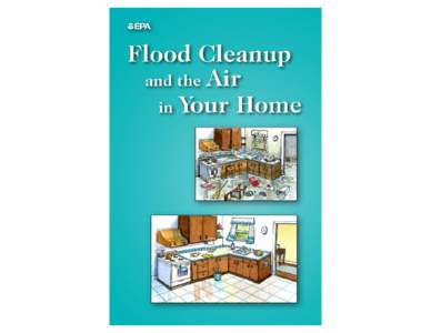 Flood Cleanup and the Air in Your Home