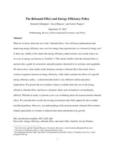 The Rebound Effect and Energy Efficiency Policy Kenneth Gillingham *, David Rapson †, and Gernot Wagner ‡ September 25, 2015 Forthcoming, Review of Environmental Economics and Policy Abstract What do we know about th