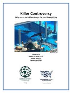 Killer Controversy Why orcas should no longer be kept in captivity ©Naomi Rose - HSI  Prepared by
