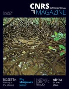 INTERNATIONAL  MAGAZINE Quarterly n°36 WINTER 2015