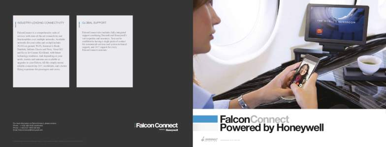 W-Doc illustrator—Falcon-Honeywell-SD