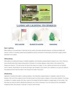 LANDSCAPE LIGHTING TECHNIQUES  SPOT LIGHTING SILHOUETTE LIGHTING
