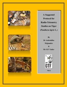 A Suggested Protocol for Radio-Telemetry Studies on Tiger (Panthera tigris L.) By