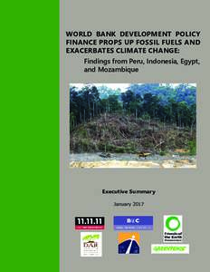 WORLD BANK DEVELOPMENT POLICY FINANCE PROPS UP FOSSIL FUELS AND EXACERBATES CLIMATE CHANGE: Findings from Peru, Indonesia, Egypt, and Mozambique