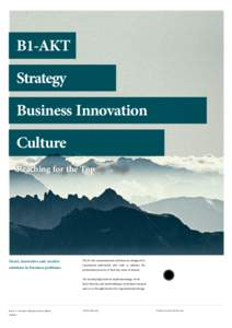 B1-AKT Strategy Business Innovation Culture Reaching for the Top