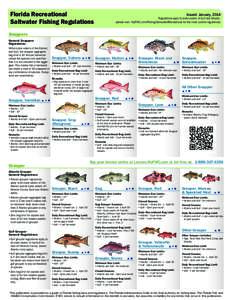 Recreational fishing idmarch document search engine for Florida saltwater fish size limits