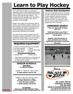 Learn To Play - Parma Flyers Hockey Association