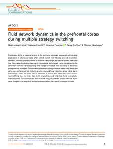 Fluid network dynamics in the prefrontal cortex during multiple strategy switching
