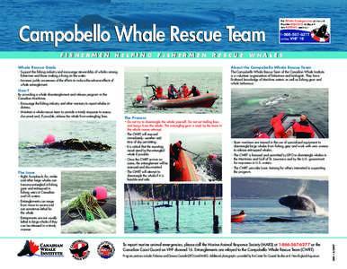 Campobello Whale Rescue Team FISHERMEN HELPING FISHERMEN RESCUE WHALES Whale Rescue Goals About the Campobello Whale Rescue Team