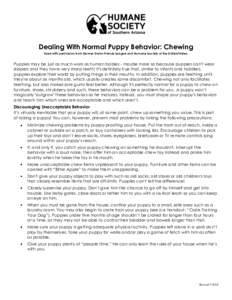 Dealing With Normal Puppy Behavior: Chewing Used with permission from Denver Dumb Friends League and Humane Society of the United States. Puppies may be just as much work as human babies - maybe more so because puppies c