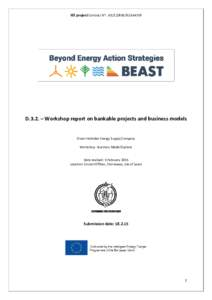 Microsoft Word - D 3. 2 Workshop report on Bankable Projects and Business models _ CNES vFINAL